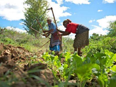 Le financement des entreprises au Sénégal: L'éternelle problématique